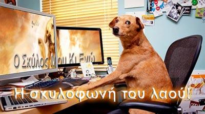 http://1.bp.blogspot.com/_zWES0YU7s5A/TOe1vJ9LS8I/AAAAAAAABkE/2UJLs6A9o5M/s1600/DOGCOMP02.jpg