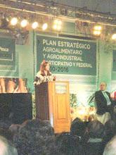PLAN ESTRATEGICO AGROALIMENTARIO Y AGROINDUSTRIAL PARTICIPATIVO Y FEDERAL 2010 - 2016