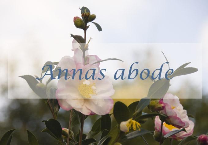 Anna's abode