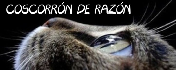Coscorrn de Razn
