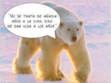 Y donde está el oso Pérez???