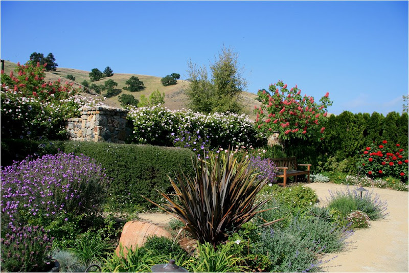 Jardin de marguerite morgan hill californie le clos for Le jardin jiva hill