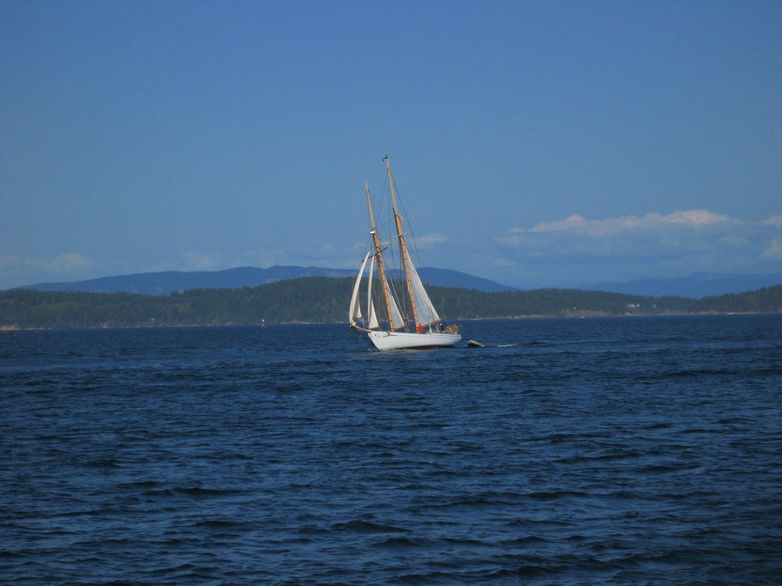 [orcas+island+8.09+015.jpg]