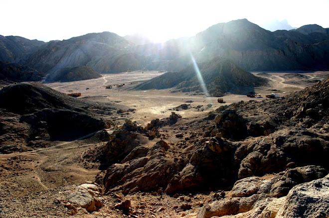 desert arabique