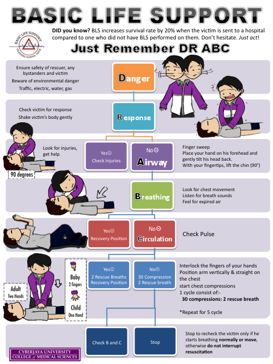Article: Basic Life Support (BLS)