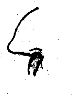[finger+in+nose.jpg]