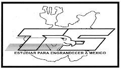 "TVSEC ""DIEGO RIVERA"""
