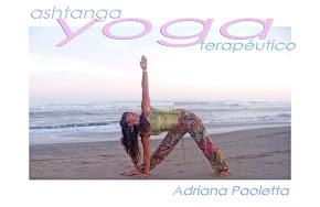 Entérate qué hemos visto en nuestros Seminarios de Ashtanga Yoga Terapéutico
