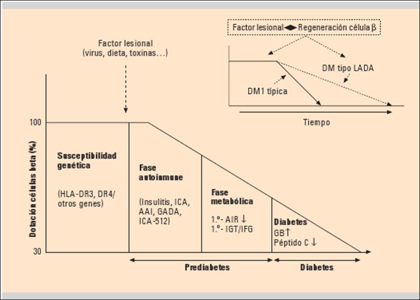 GUIAS Y REVISIONES MEDICAS: DIABETES MELLITUS TIPO 1