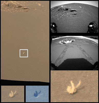 Penemuan tengkorak hewan di Mars