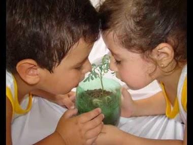 Sustentabilidade infantil