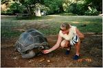 Gunvor och havssköldpadda i Kenya 1996