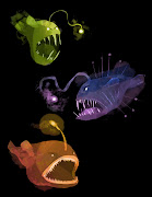 Designed some angler fish for my film. Still working on it but wanted to .