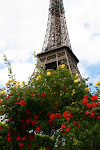 DO YOU LOVE PARIS?  SO DO I!