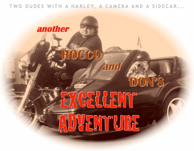 Rocco and Don Adventures