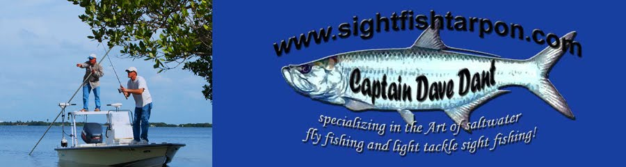 Captain Dave Dant - Sightfish Tarpon.com