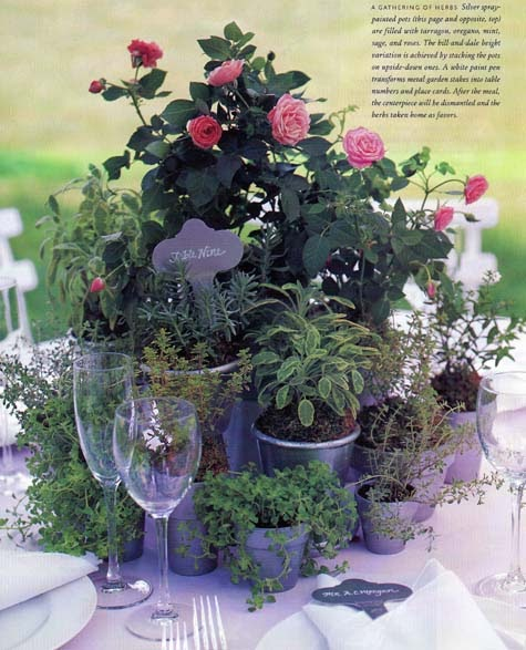 2 Rock Lobsters Flowerless Plant Centerpieces