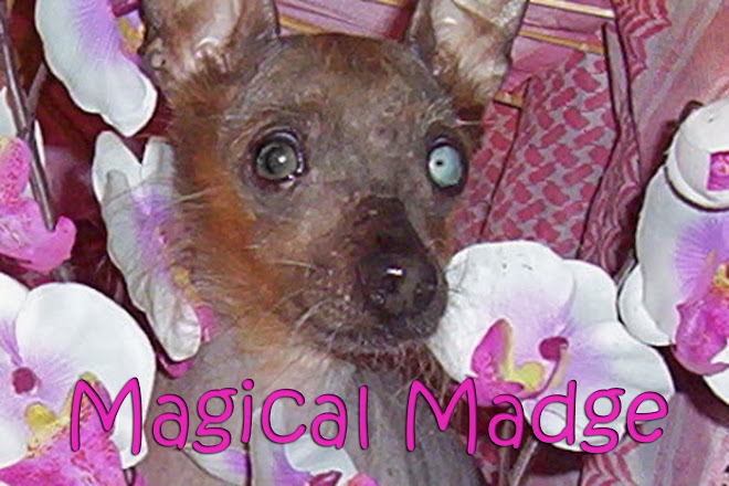 Magical Madge