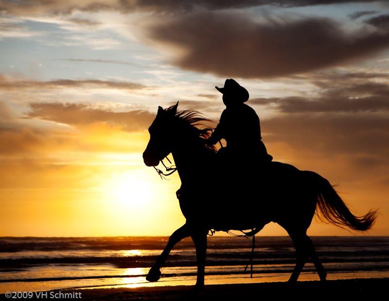 [20090711_MB_Horse_0052-Edit.jpg]