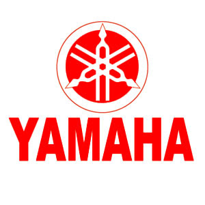 A snapshot of Yamaha in 2011