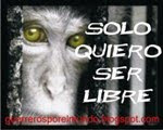 No speciesism