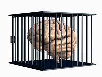 O perigo da lavagem Cerebral  Lavagem+Cerebral