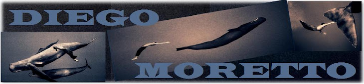 ...:Diego Moretto:...