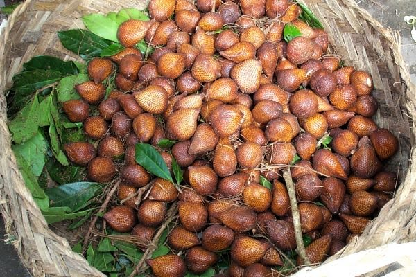 how to choose salak fruit