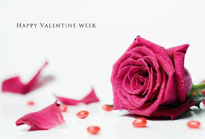 Valentine Week - A Big Array Of Days For Love