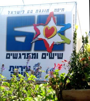 לוגו ששים מגן דוד