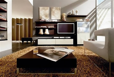 Interior Design Ideas 2011