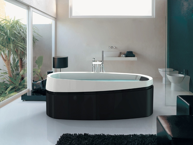 Home design interior decor home furniture for Jacuzzi bathroom designs