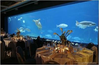 Aquarium Restaurant Nj