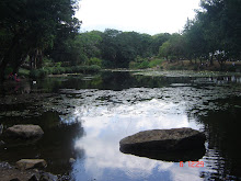 laguna san fransisco de caldas