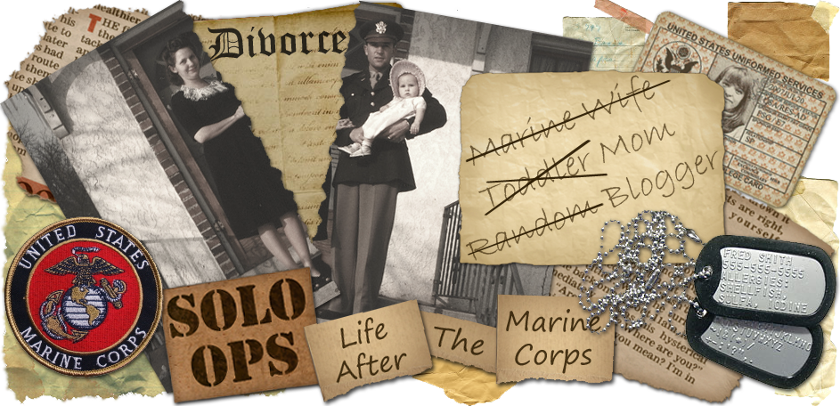 Wife, Mom, Blogger: Solo Ops, Life After The Marine Corps