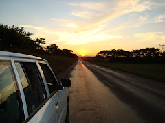 Zanu PF&#39;s sunset