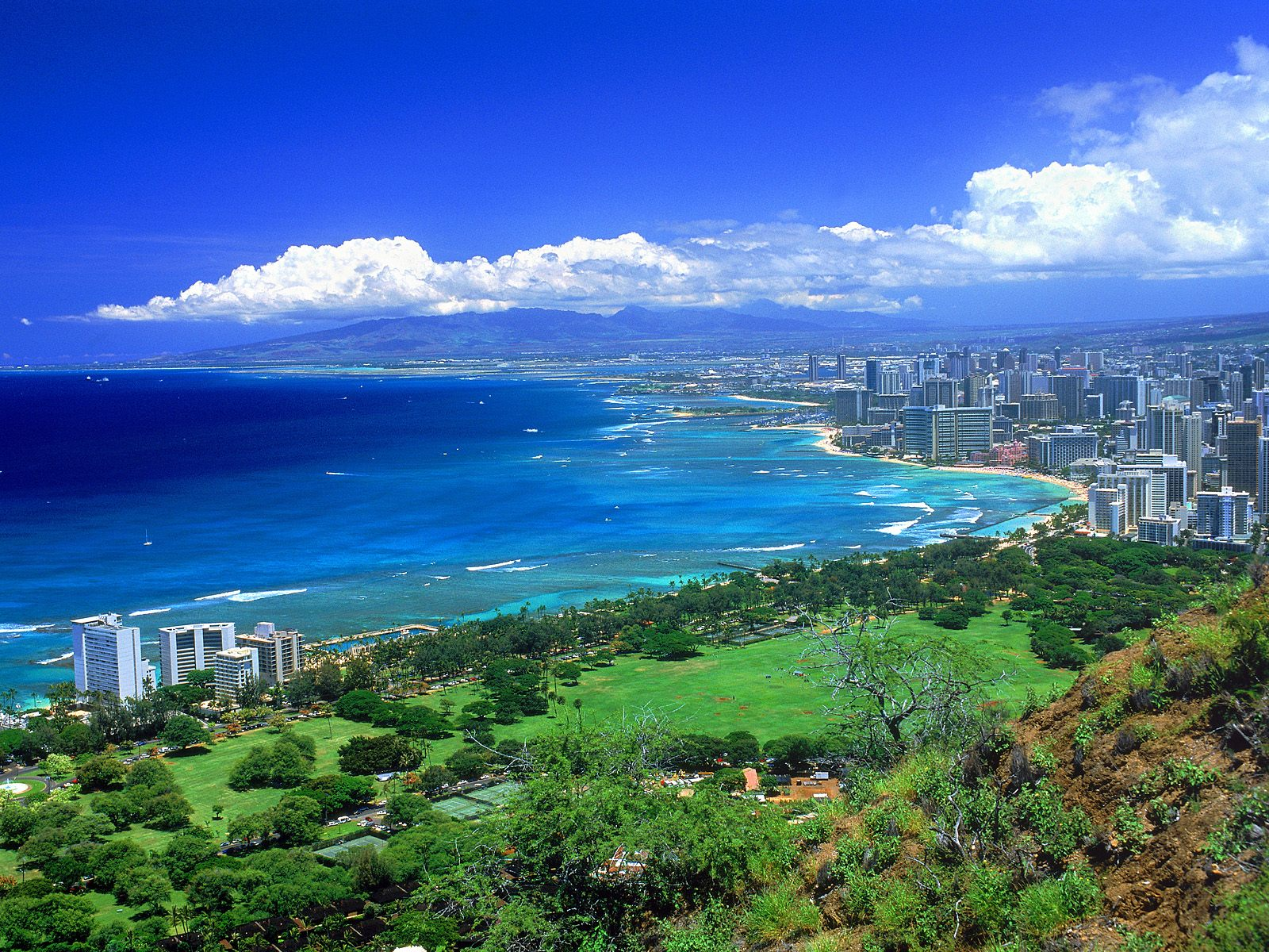 The Beauty of Nature in Hawaii