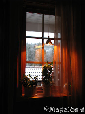 En onsdagsmorgon i november. Snö på garagetaket och träden i bakgrunden. Värmande ljus från lampan i fönstret över blommorna på fönsterbrädan. Sovrumsfönster.