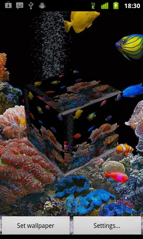 3D Fish Live Wallpaper