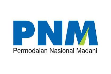Lowongan PT. Permodalan Nasional Madani (Persero) Riau September 2019