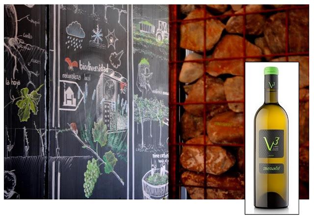 ruedawijnroute, rueda ruta del vino, biologische wijn spanje, biologische wijn rueda, wijntoerisme castilla y leon, oenotoerisme spanje, wijntoerisme spanje, wijntoerisme rueda, verdejo, rueda, wijtoerisme