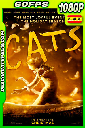 Cats (2019) 1080p 60FPS BDrip Latino – Ingles