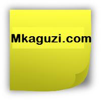 mkaguzi