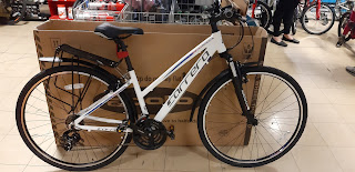 Stolen Bicycle - Carrera Crossfire 1