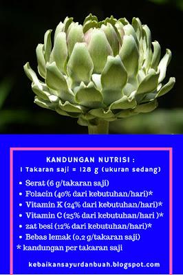 kandungan nutrisi pada Artichoke