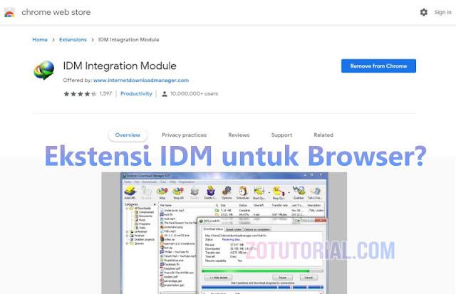 Download Ekstensi IDM untuk Browser Google Chrome (Add-ons) zotutorial