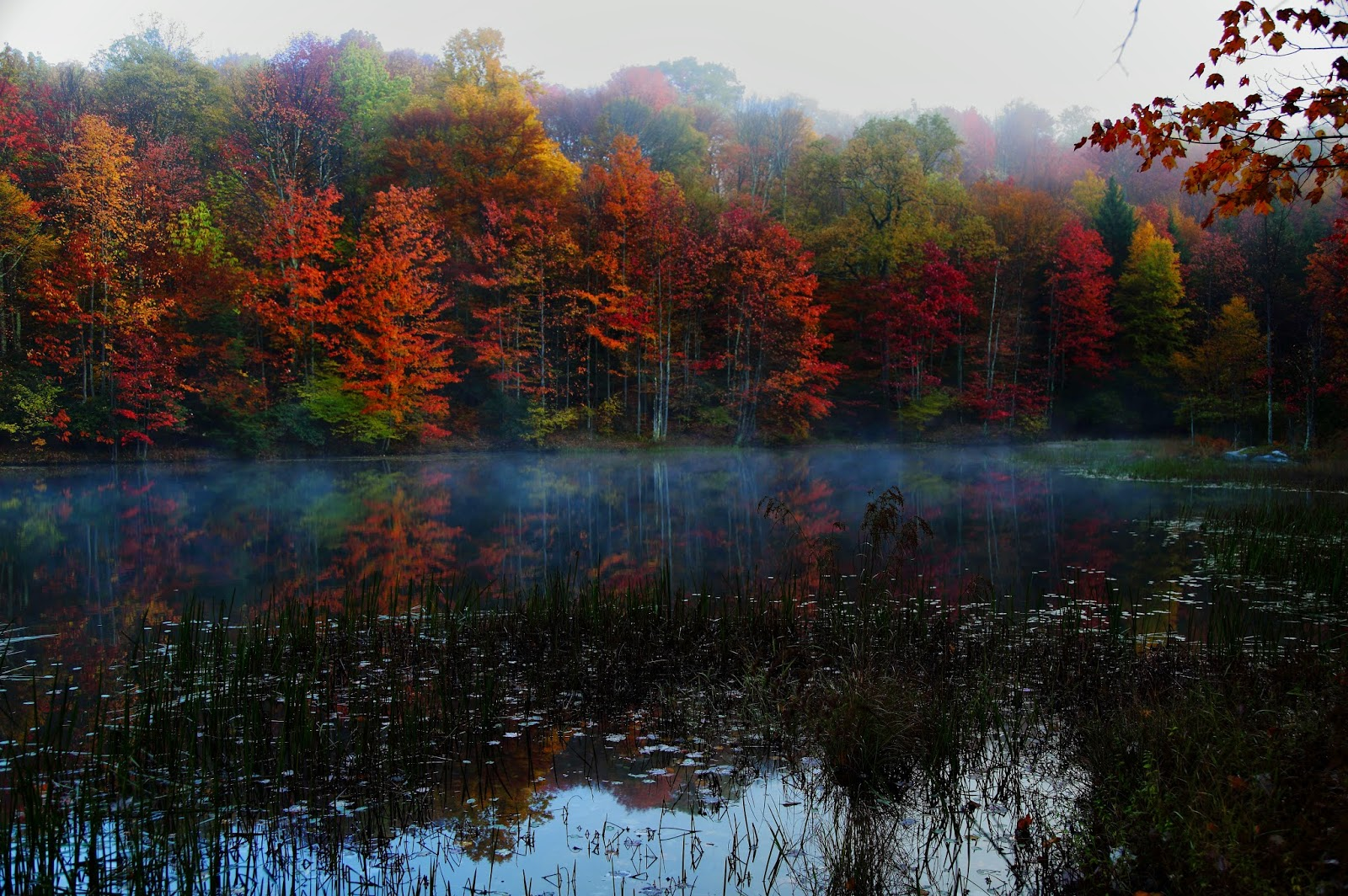 Early morning fog slowly drifts across Summit Lake in the mountains of West Virginia on a cool Autumn morning. The colorful fall foliage is beginning to awake as the water reflects from the glassy still lake waters.  Picture Height: 3566 pixels Picture Width: 5363 pixels Lens Aperture: f/4 Image Exposure Time: 1/10 sec Lens Focal Length mm: 32 mm Photo Exposure Value: 1 EV Camera Model: Canon EOS 5D Mark II Photo White Balance: 0 Color Space: sRGB ForestWander Nature Photography: ForestWander.com ForestWander: ForestWander Nature Photography