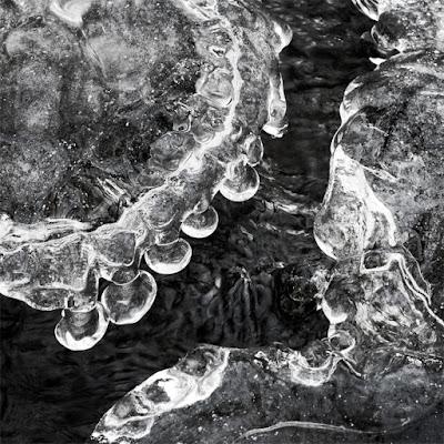 Fringe by Sara Harley