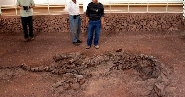 Carbon dating soft tissue found in dinosaur bones