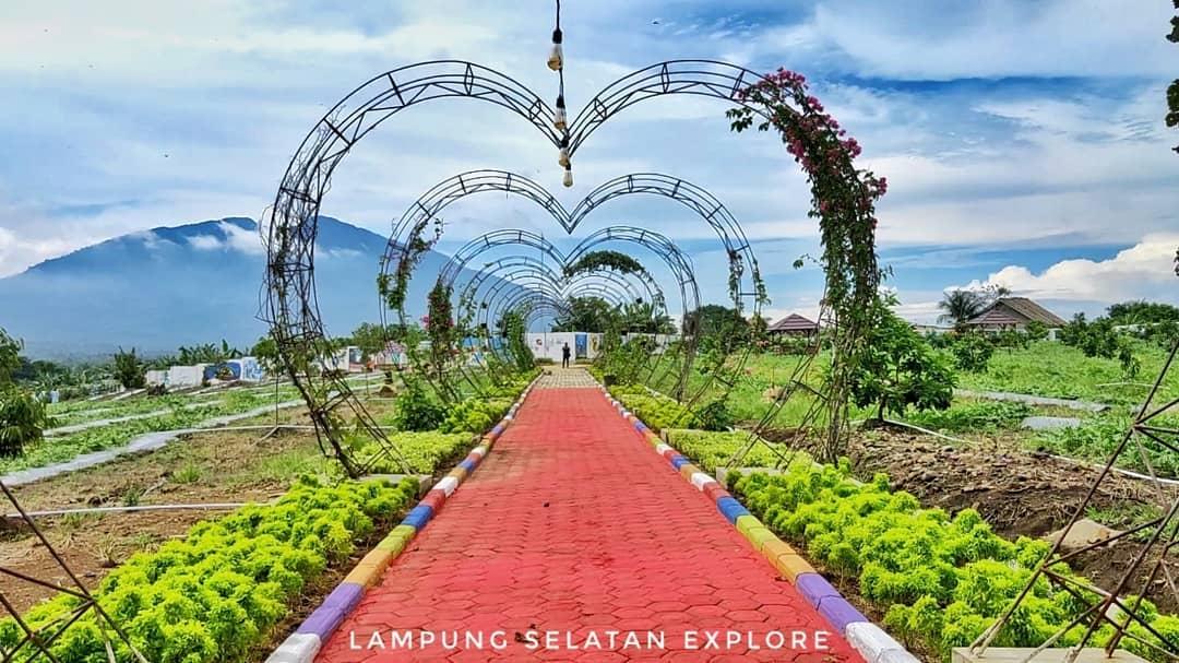 Kebun Edukasi Lampung Selatan